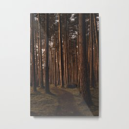 Golden Hour Walk Metal Print