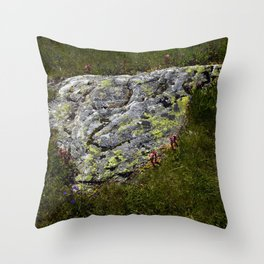 STONES LICHEN NUGGET Throw Pillow