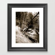Follow Your Path Framed Art Print