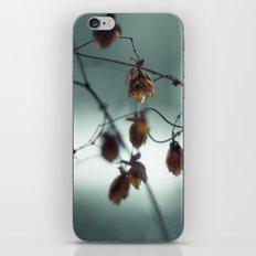 Frost & beauty III iPhone & iPod Skin
