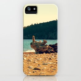 Rocks On The Wood iPhone Case
