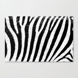 zebra skin teksture Canvas Print