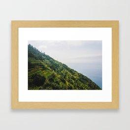 Wine mountains Framed Art Print