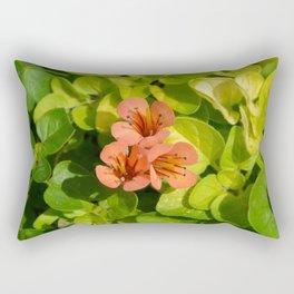 Three in colour...... Rectangular Pillow