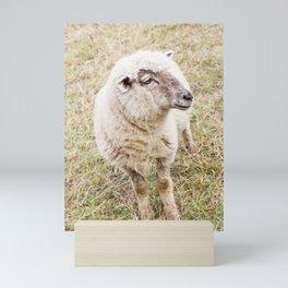 Lamb Mini Art Print