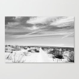 pathways (recently untraveled) Canvas Print