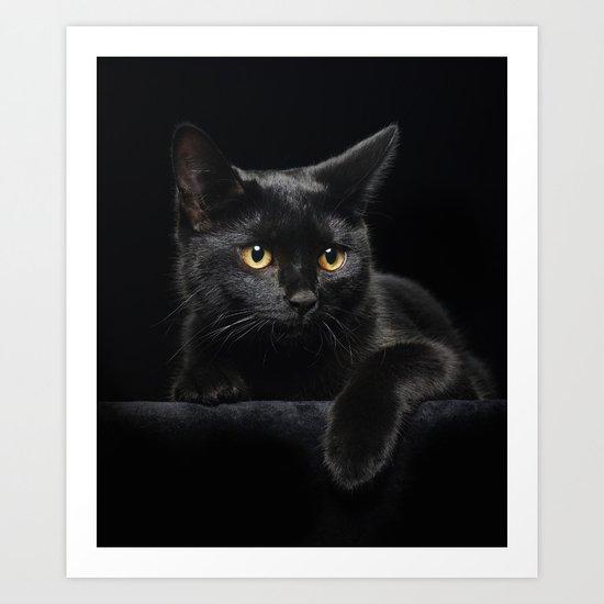 Black Cat by fantasyartdesigns