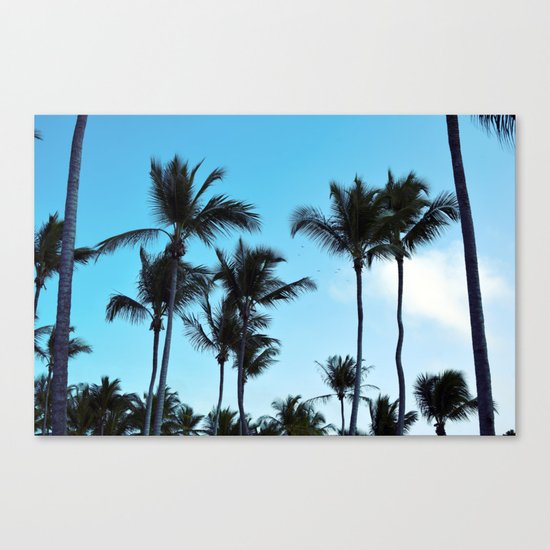 Coconut trees | Praia do Espelho | Brazil Canvas Print