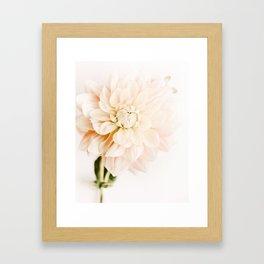 Vanilla Truffle Dahlia Framed Art Print