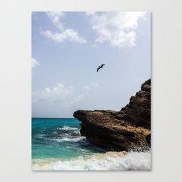 Pelican at Mullet Bay Canvas Print