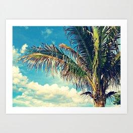 Breezy Beach Palm Art Print