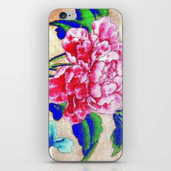 Delicacy iPhone & iPod Skin