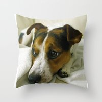 jack russell Throw Pillows featuring jack russell by Brmbrmba27