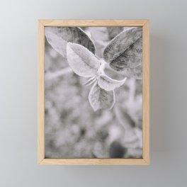 Black & White leave | Fine-art print Framed Mini Art Print