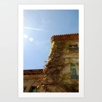 Climbing Vines; Carcissonne, France Art Print