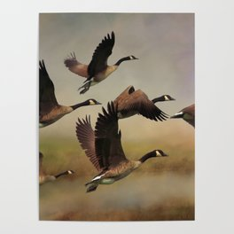 Geese On A Foggy Morning Poster