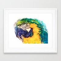 parrot Framed Art Prints featuring Parrot by jbjart