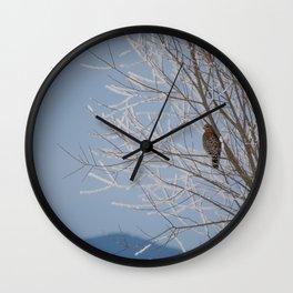 Red Shoulder Hawk Wall Clock