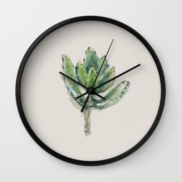 Kalanchoe Tomentosa - Panda plant Wall Clock