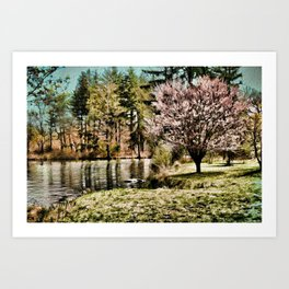 Spring Time In New England Art Print