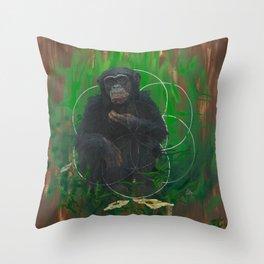 Devolve to Evolve Throw Pillow