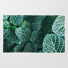 Leaves by Samuel Zeller Rug