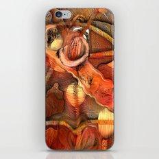 Cross Town  iPhone & iPod Skin