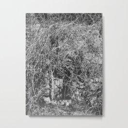 Briar II Metal Print