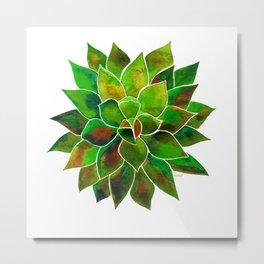 Green aloes Metal Print