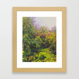 Mystical fog Framed Art Print