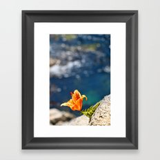 Beauty by the Waters Framed Art Print