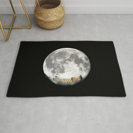 Sleeping cat with the Moon Rug