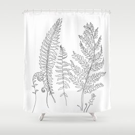 Minimal Line Art Fern Leaves Shower Curtain