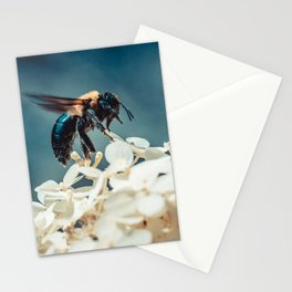 Lift-off. Bee Photograph Stationery Cards
