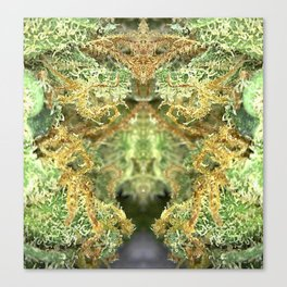 Orange Crush Trichome Monster Canvas Print