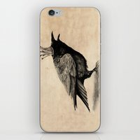 raven iPhone & iPod Skins featuring Raven by Anna Shell