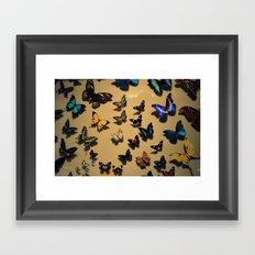 Delicate Auras Framed Art Print