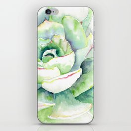 Succulent Plant 1 iPhone Skin