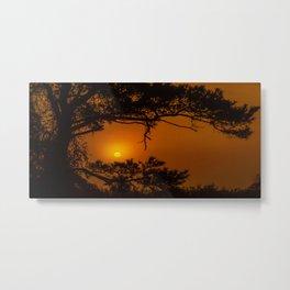 Enchanted Morning Metal Print