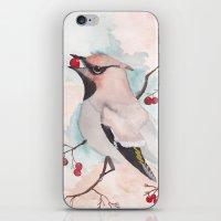 bohemian iPhone & iPod Skins featuring Bohemian by Tanya HD