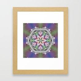 Some Other Mandala 411 Framed Art Print
