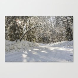 Covered in White Canvas Print