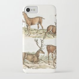 Illustration of hinds stags or red deer from Sporting Sketches (1817-1818) by Henry Alken (1784-1851 iPhone Case