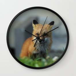 Snow on the Red Fox Noze Wall Clock