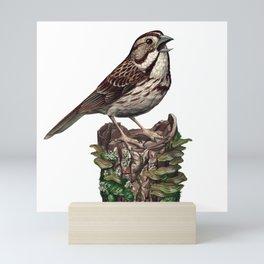 Song Sparrow Mini Art Print