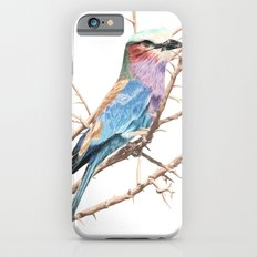Lilac breasted roller Slim Case iPhone 6s