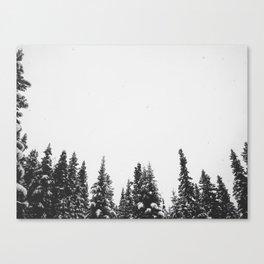 Montmorency Canvas Print