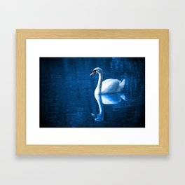 Beautiful Swan Blue Lake Framed Art Print