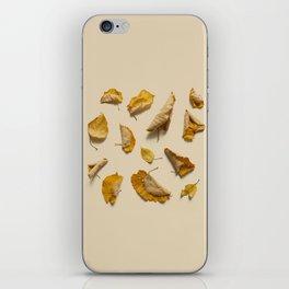 COMPOSIZIONE FOGLIE VI iPhone Skin