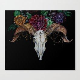Ram and Dahlias Canvas Print